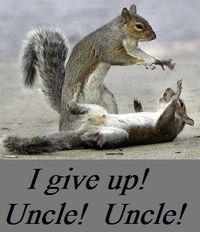 SquirrelsUncle