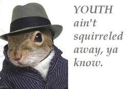 SquirreledAway