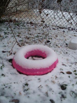 SNOWSWIM