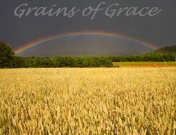 GraceGrains