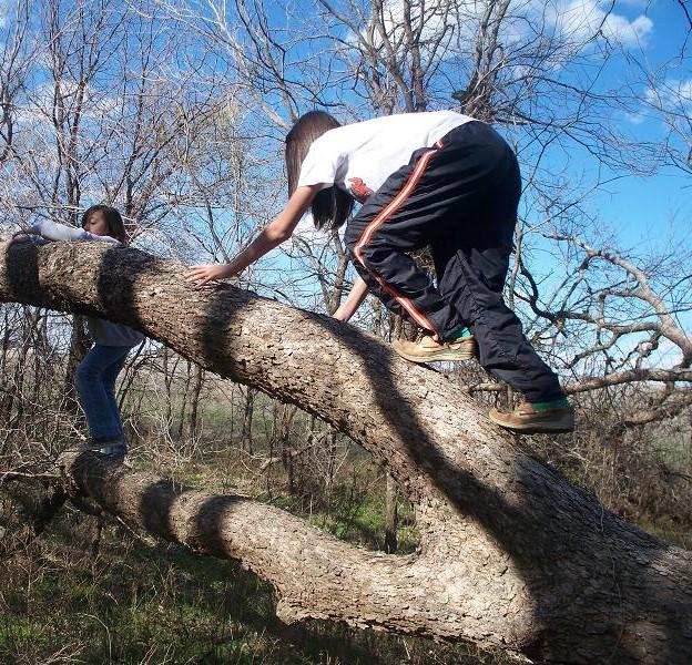 ClimbingTrunks