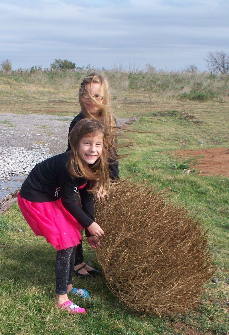 Tumbleweed held