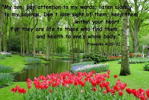 Healing Proverbs