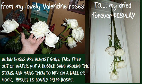 VALENTINE roses make-over