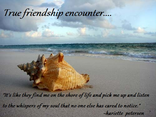 Conch shell friendship