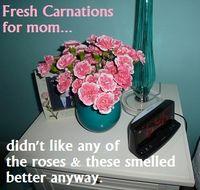Carnations4mom