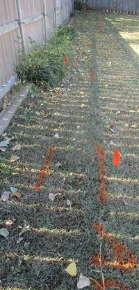 YARDmarkings