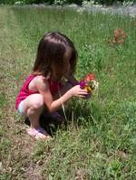 Abbypickingflowers_4