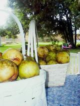 Pearsnbaskets
