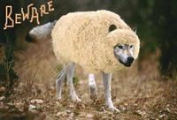 Wolfnsheepsbeware