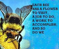 Bumblebeejob